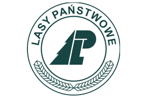 p2-lasy